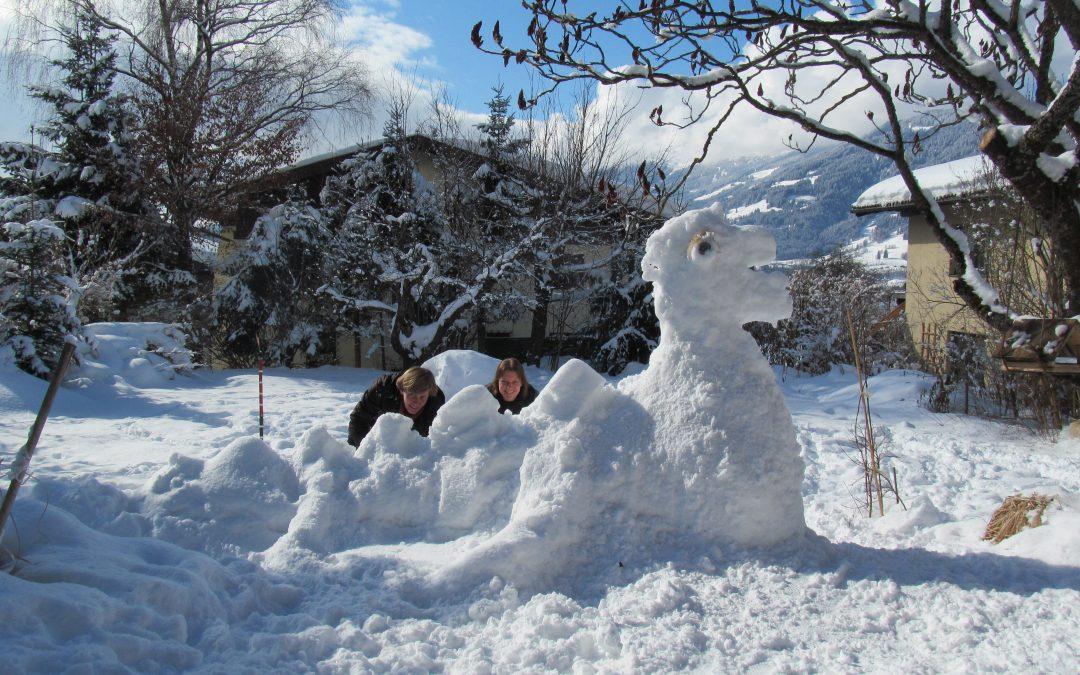 Gesund durch den Winter mit einem starken Immunsystem!